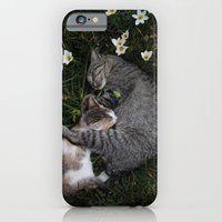 Sleep [A CAT AND A KITTEN] iPhone 6 Slim Case