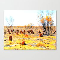 Termite mounds, outback Australia Canvas Print