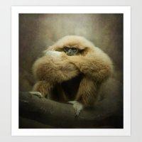 Study Of A Gibbon - The … Art Print