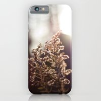 iPhone & iPod Case featuring Goldenrod Light by Katie Kirkland Photography
