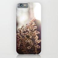 Goldenrod Light iPhone 6 Slim Case
