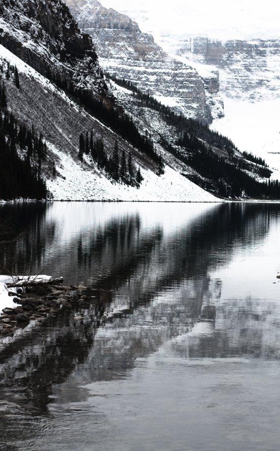 Water Reflections II Art Print