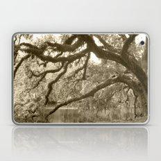 WaterOak Laptop & iPad Skin
