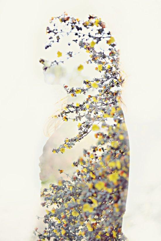 Double Yellow Art Print