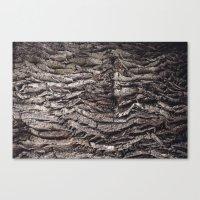 Oak Tree Trunk Canvas Print