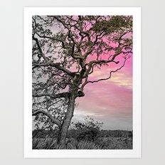 Marsh Tree Study 2 Art Print