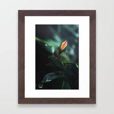 The voice of beauty Framed Art Print