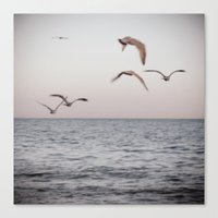 There Is Another Sky Canvas Print