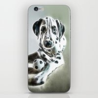 brothers in colors iPhone & iPod Skin