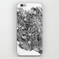 Spirit Bear iPhone & iPod Skin