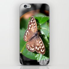 Butterfly Moments iPhone & iPod Skin