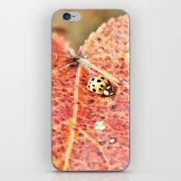Lady on the Run iPhone & iPod Skin