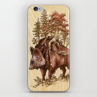 Boar Of The Woods iPhone & iPod Skin