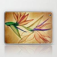 Bird Of Paradise  Laptop & iPad Skin