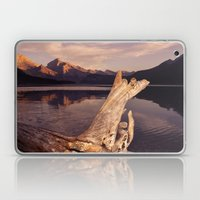 Alberta Driftwood Laptop & iPad Skin