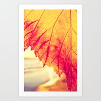 Autumn - Art Print