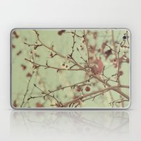 VINTAGE NATURE II Laptop & iPad Skin