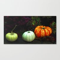 The Magical Pumpkins Canvas Print