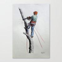 Arborist ,Tree Surgeon using stihl 020T chainsaw,husqvarna, art Canvas Print