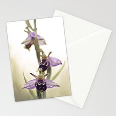 Ophrys Apifera Stationery Cards