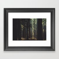 Into the wood Framed Art Print