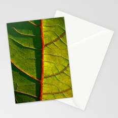 leaf structure macro IV Stationery Cards