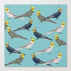 Cockatiels Canvas Print