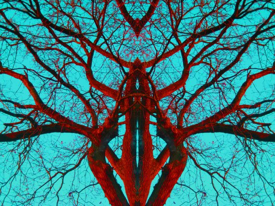Can you believe what life can come from a tree? Art Print