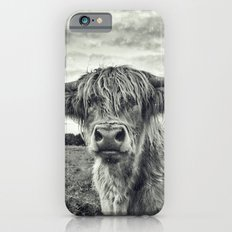 Highland Cow II Slim Case iPhone 6s