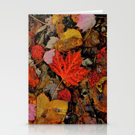 Nature's Palette Stationery Card