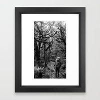 Trekking @ Routeburn Track Framed Art Print