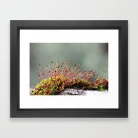 Life Form IV Framed Art Print