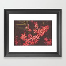Coral Flower Tales Framed Art Print