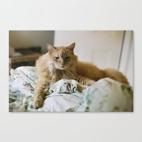 Canvas Print featuring mon chat by Ava Nelson