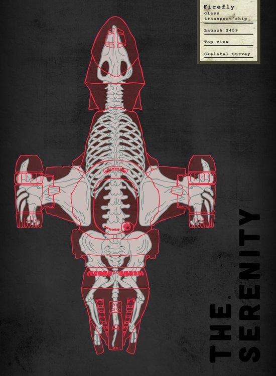 Spaceship Skeletal Survey: The Serenity  Art Print