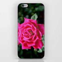 I AM THE QUEEN OF FLOWERS iPhone & iPod Skin