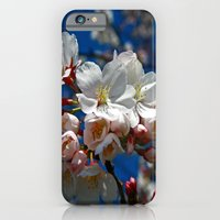iPhone & iPod Case featuring Cherry Blossoms by Joanna  Pickelsimer