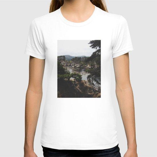 Bluefish Cove T-shirt