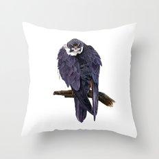 Hobby Throw Pillow
