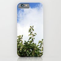 Where the Trees Reach the Sky iPhone 6 Slim Case