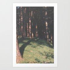 Trees In Ullswater Art Print