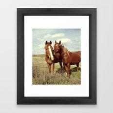 Horse Affection Framed Art Print