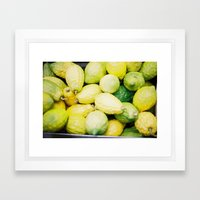 etrogs Framed Art Print