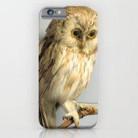 Wise Owl iPhone 6 Slim Case