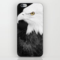 Bald Eagle With Yellow E… iPhone & iPod Skin