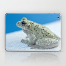 Ribbit Laptop & iPad Skin