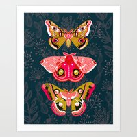 Lepidoptery No. 4 By And… Art Print