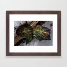 Moody Leaf Framed Art Print