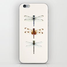 dragonfly collector iPhone & iPod Skin