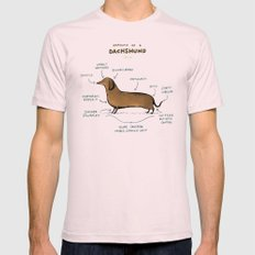 Anatomy of a Dachshund Mens Fitted Tee Light Pink SMALL